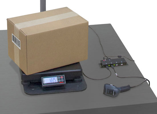 dimensional weighing system with data collection hub
